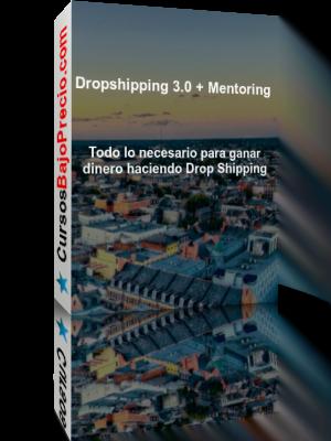 Dropshipping 3.0 + Mentoring