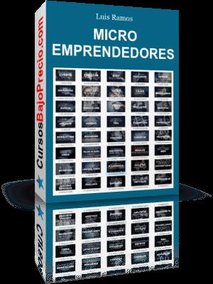 Micro Emprendedores