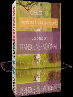 Transgeneracional